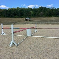 What's in Your Ring? EN Staff Edition: Wylie's Short-on-Time Shamrock  |  Eventing Nation -  Three-Day Eventing News, Results, Videos, and Commentary