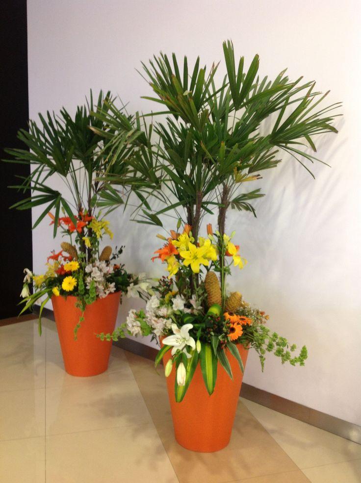 Macetas con flores naturales  Macetas plantas y jardineras  Garden Plants y Planters