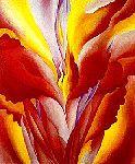 O'Keeffe: Red Canna