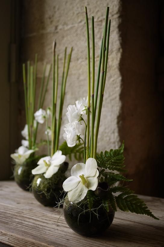 Corporate flowers, corporate flower centerpiece, add pic source on comment and we will update it. www.myfloweraffair.com can create this beautiful flower look.: