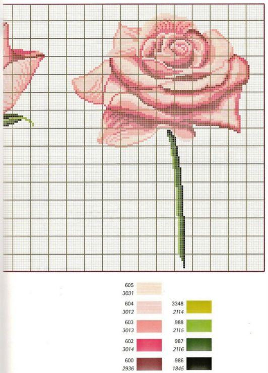 Gallery.ru / Фото #5 - Les Roses de Monique Bonnin - Mongia
