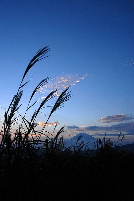 遠影の富士 2   Explore September29, 2008 #371 Mt.Fuji   Toshizoh   Flickr