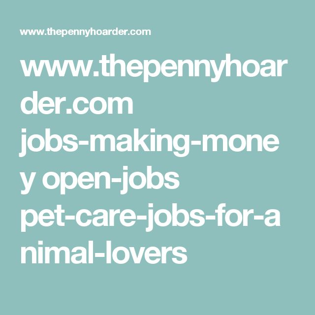 www.thepennyhoarder.com jobs-making-money open-jobs pet-care-jobs-for-animal-lovers