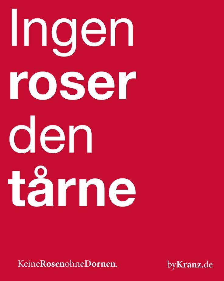 Unser dänisches Sprichwort des Tages:Keine Rosen ohne Dornen [ingen Rose den tårne].