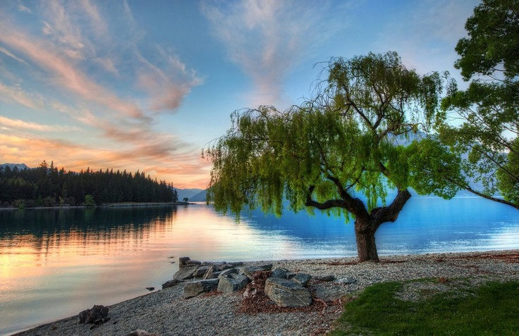 In Queenstown at the lake...Photography Portfolio, Trey Ratcliff, Favorite Places, Nature, Serenity Lakes, Trees, Newzealand, Travel, Queenstown New Zealand