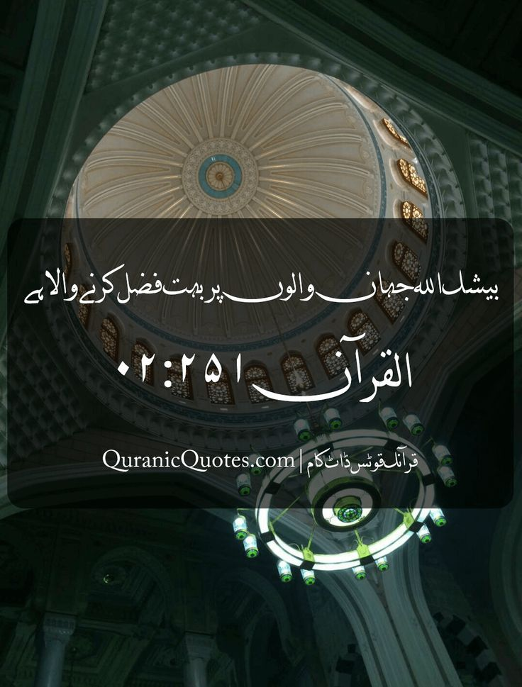 #09 The Quran 02:251 (Surah al-Baqarah) اگر اللہ تعالیٰ بعض لوگوں کو بعض سے دفع نہ کرتا تو زمین میں فساد پھیل جاتا، بیشک اللہ جہان والوں پر بہت فضل کرنے والا ہے And if Allah had not repelled some men by others, the earth would have been corrupted. But Allah is the Lord of Kindness to (His) creatures. #Quran #quranic #quotes #verses #urdu #Allah #Religion #Islam #Muslim #inspiration #mercy #power #peace #Islamic #reminders