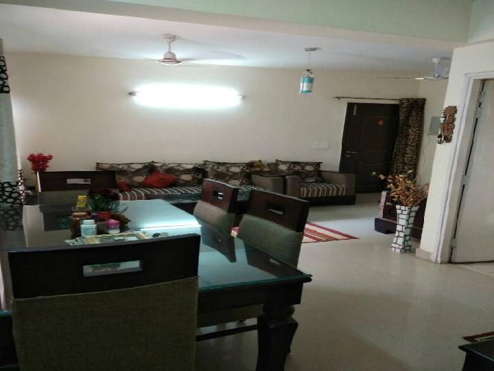 Lovely Apartment For Rent In Gurgaon Search Apartments For Rent In Gurgaon. Get  Varified List Of