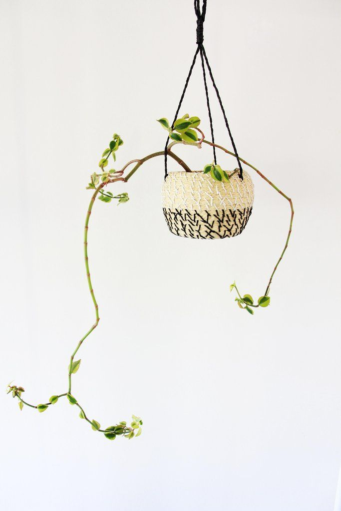 Dash Hanging Planter. Succulent Plant, Woven Planter from Copper and Cross $55