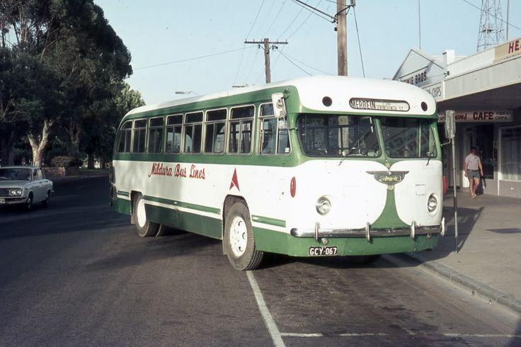Mildura Bus Lines