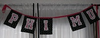 Phi Mu Banner, with Cricut letters, fabric and ribbon