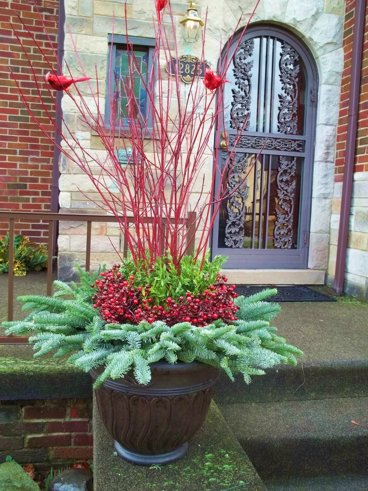 13 Best Images About Winter Containers On Pinterest Bird