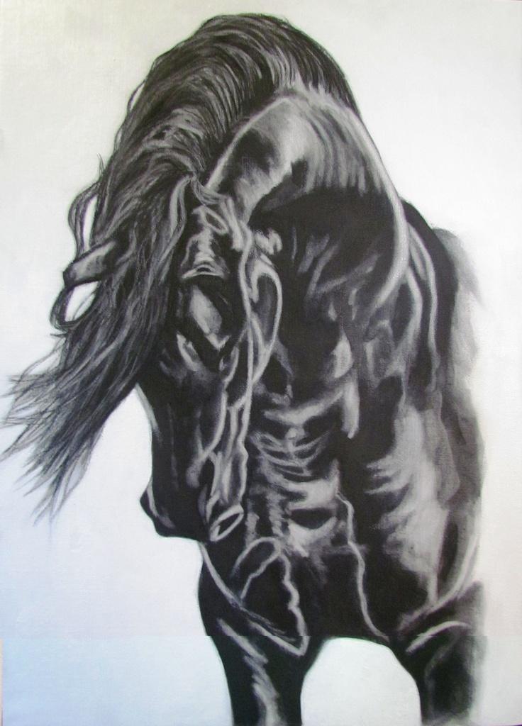 Yasper-Friesian Stallion