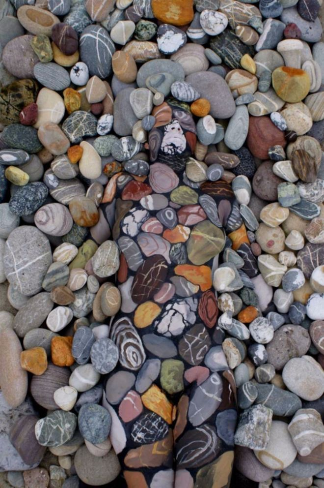 The following picture might look like nothing more than a pile of rocks, but there's something else hiding in plain sight. Do you see it? No? Look a little closer ...