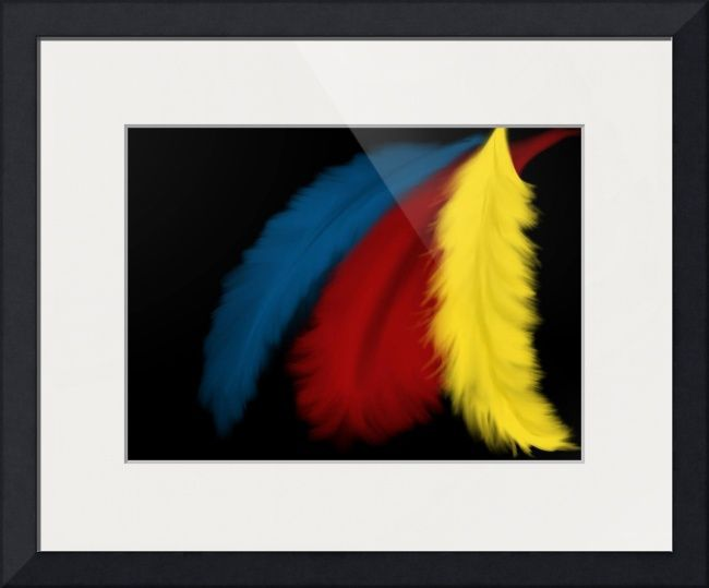 """""""Technicolor Feathers"""" by C. Eggerson, Chicago, IL // An exploration of texture and color, with three brilliantly colored feathers... // Imagekind.com -- Buy stunning fine art prints, framed prints and canvas prints directly from independent working artists and photographers."""