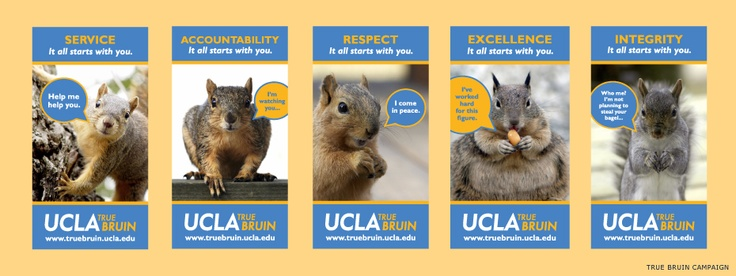 UCLA's Housing and Hospitality Services marketing unit produced this print campaign to educate and raise awareness of UCLA's honor code (True Bruin). Colors and font are from the Graphic Identity Program (launched 2004; now obsolete).