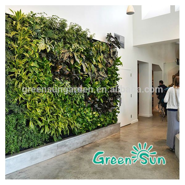 72 best images about vertical plant wall interior on pinterest hedges green walls and - Indoor plant wall diy ...