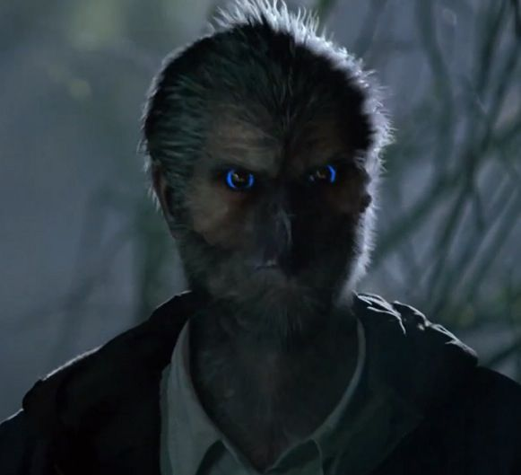 54 best images about The Wesen of Grimm on Pinterest | To ... Grimm Steinadler