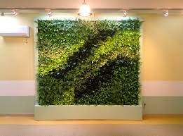 Image result for green wall interior