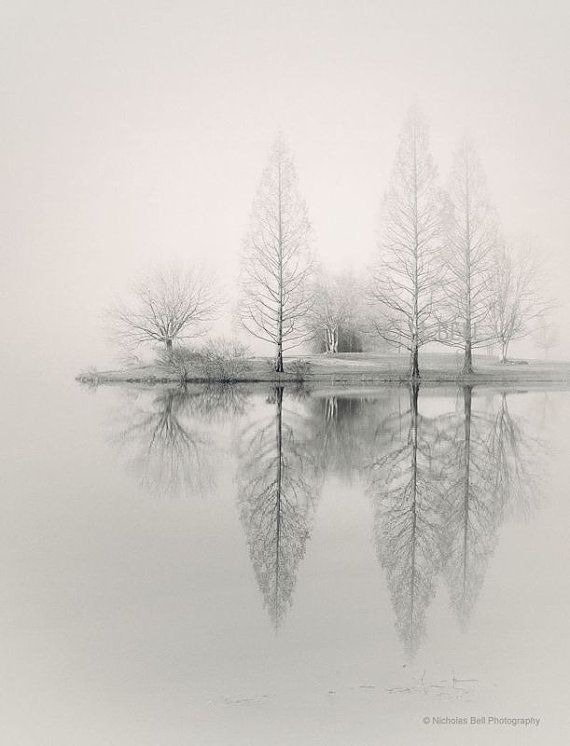 Foggy landscape photography, lake house art, lake house decor, fog photography, fine art landscape, tree photography, winter photography