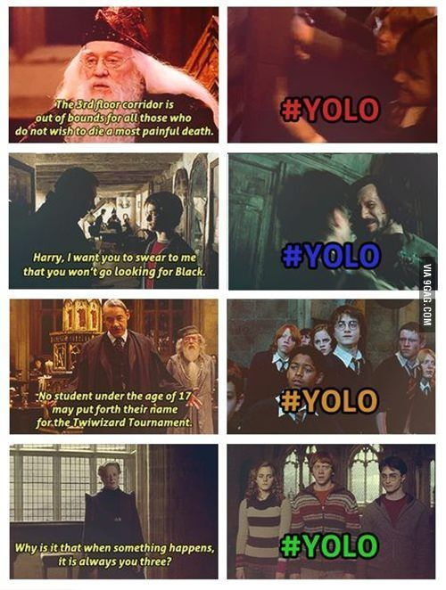 awesome Harry Potter YOLO by http://dezdemon-humoraddiction.space/harry-potter-humor/harry-potter-yolo/