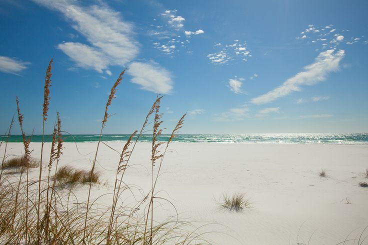 Destin travel guide on the best things to do in Destin, FL. 10Best reviews restaurants, attractions, nightlife, clubs, bars, hotels, events, and shopping in Destin.