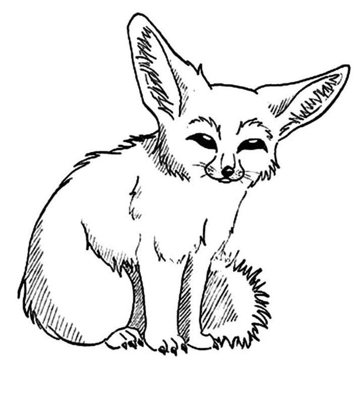 Fennec Fox Coloring Page