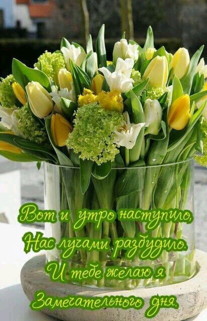 Красивые картинки с желтыми тюльпанами и пожеланиями доброго утра