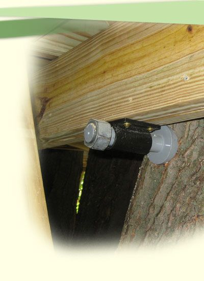 Tree house- Tips for tree safety