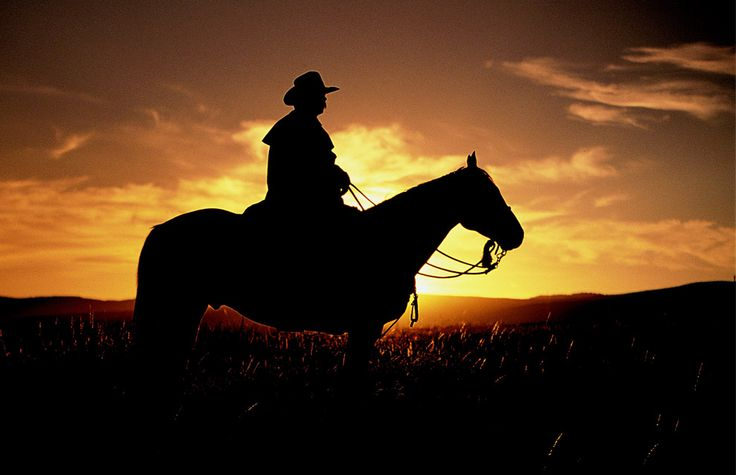 Cowboy Riding Into The Sunset Cowboy And His Trusty