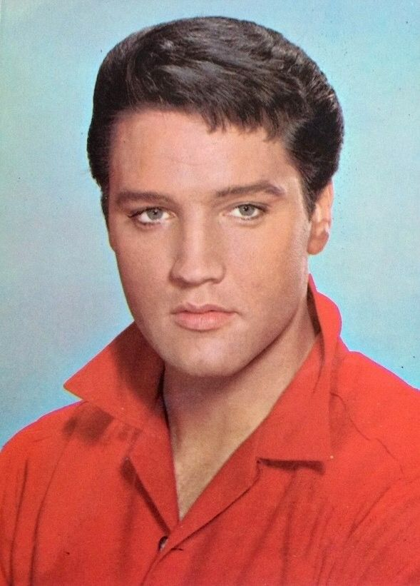 Elvis Presley. in 2019 | Elvis presley movies, Graceland ...