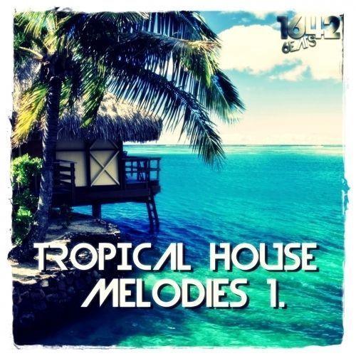 Tropical House Melodies 1 (24-Bit WAV LOOPS / SAMPLES)
