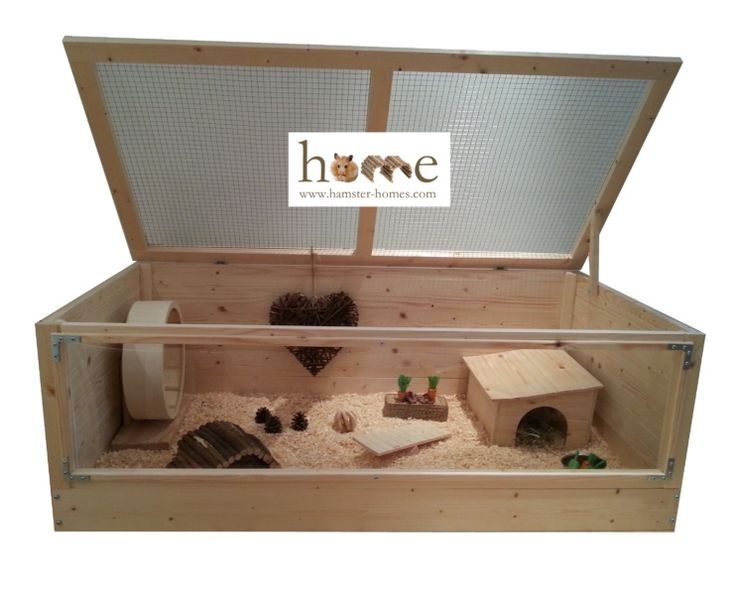 Hedgehog Home with Perspex front.  Attractive indoor hutch also suitable for Guinea pigs.