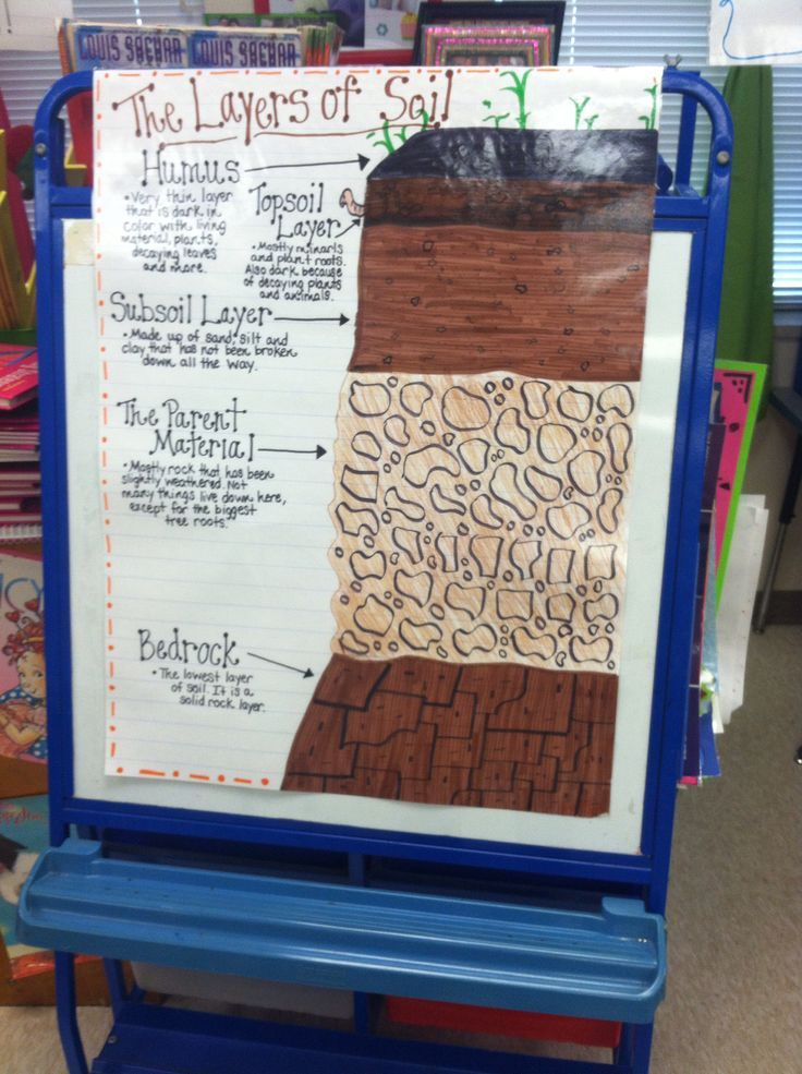 The layers of soil anchor chart 3rd grade science for Soil 4 teachers