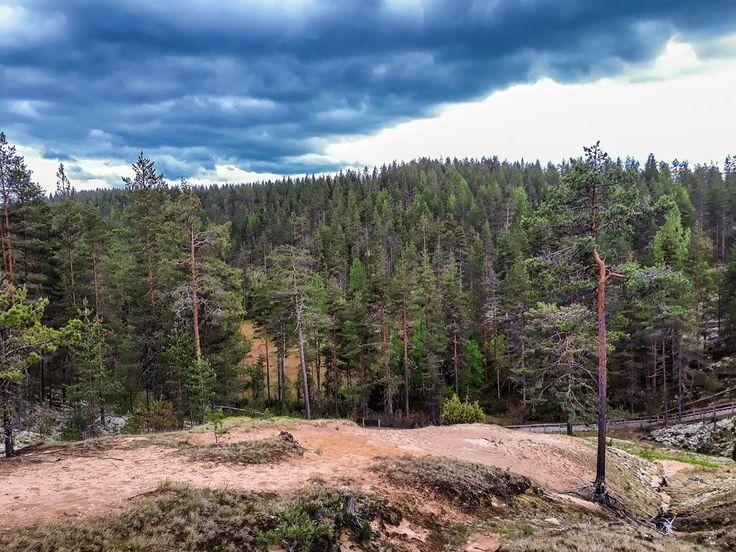 """151 tykkäystä, 5 kommenttia - Heikki (@heikki_hautala) Instagramissa: """"#nationalpark #geopark #rokua #finland #utajärvi #vaala #syvyydenkaivo #ig_finland #discoverfinland…"""""""