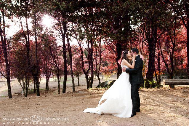 Magic Wedding...