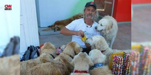 Bodrum'un 'Golden Çetesi': Muğla'nın Bodrum ilçesinde sokağa terk edilen golden retriever cinsi köpeklere sahip çıkan eski güverte reisi Şenol Özbakan sosyal medyada oluşturduğu 'Golden Çetesi' grubuyla dünya genelinde binlerce takipçiye ulaştı.