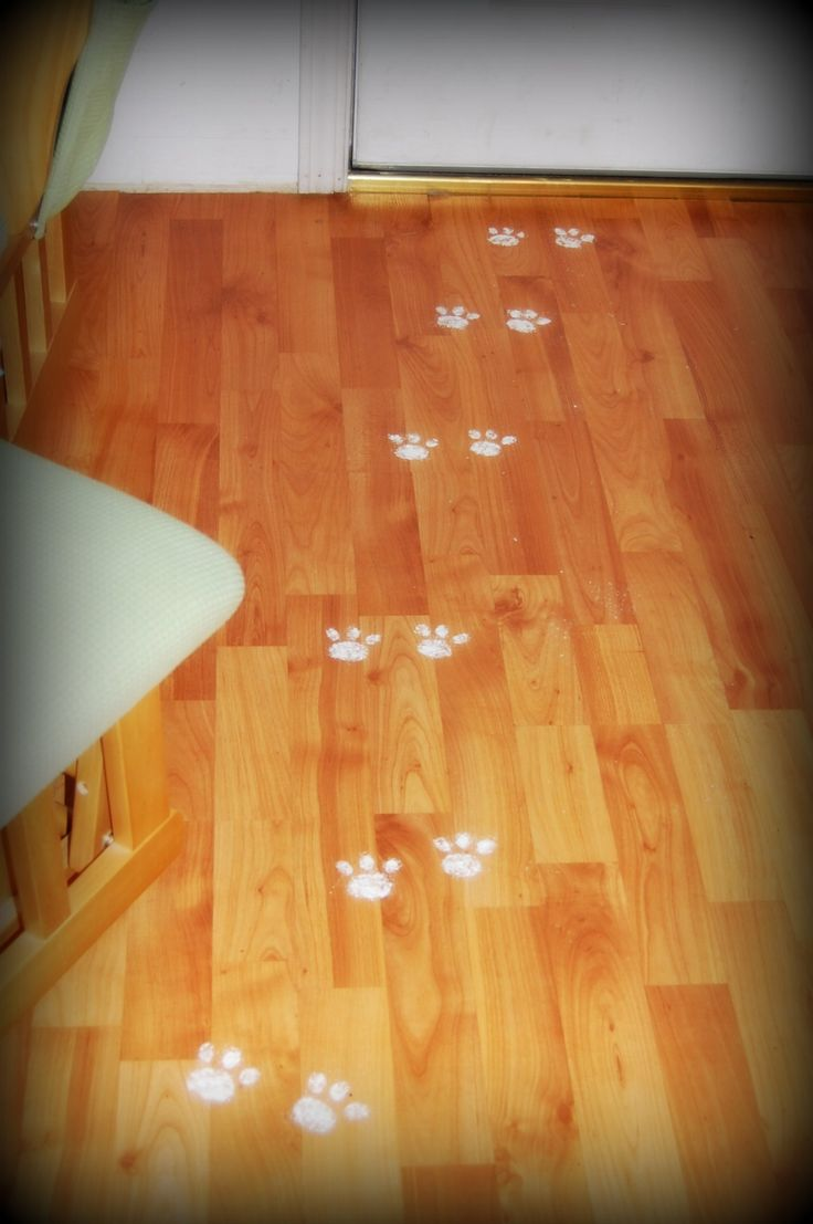 Bunny Tracks: Sharing A Special Easter Tradition And Making Memories! Painting bunny tracks using flour across our floor was something my mother & I did annually for her kindergarten class to their delight.    http://www.MervEdinger.com