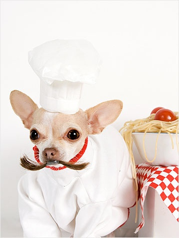Although Octavio loves that he got to stay in the food industry after his Taco-Bell days, he hates that no one believes he's actually Italian.