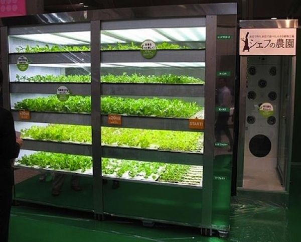 "This $90,000 vending machine called ""The Chef's Farm"" can grow 60 heads of lettuce a day using florescent light bulbs. www.urbanrambles.com"