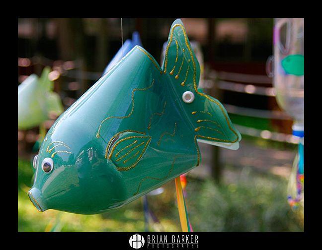 31 Best Bottle Fish Images On Pinterest Soda Bottles