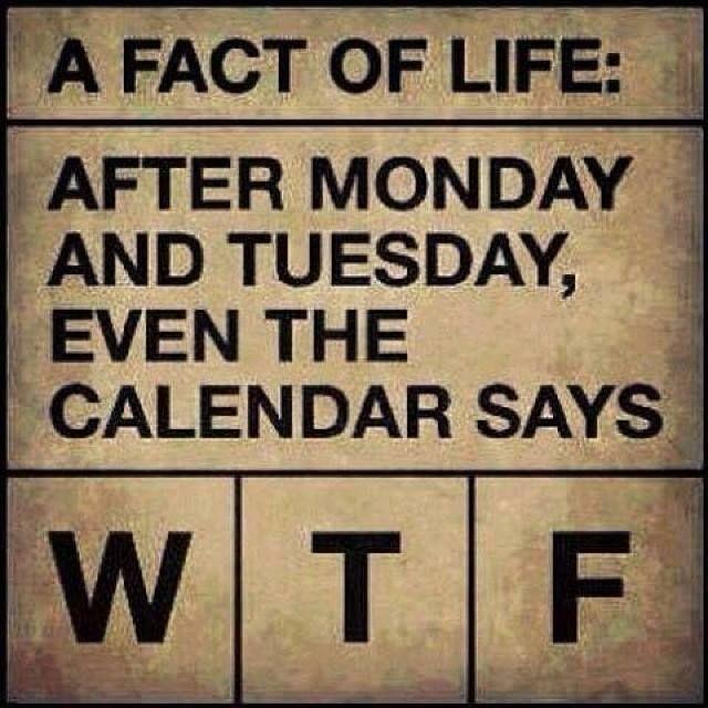 After Monday and Tuesday, even the calendar says WTF  #calendar #fun #wtf #büro #arbeit