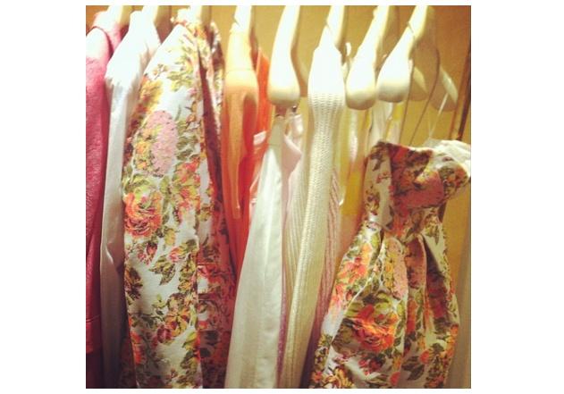 stella mccartney rose dress blazer