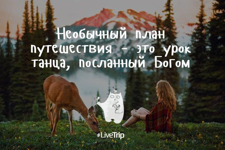 #LiveTripЦитаты: Необычный план путешествия – это урок танца, посланный Богом
