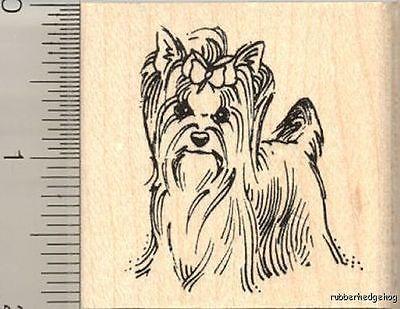 Yorkshire Terrier Rubber Stamp H11809 WM yorkie dog