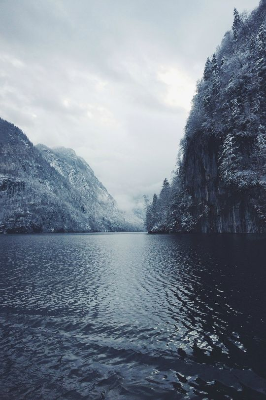 expressions-of-nature:  by mariusbauer