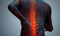 Zdrowie z roślin: Chroniczny ból - przyczyna - zrosty powięzi
