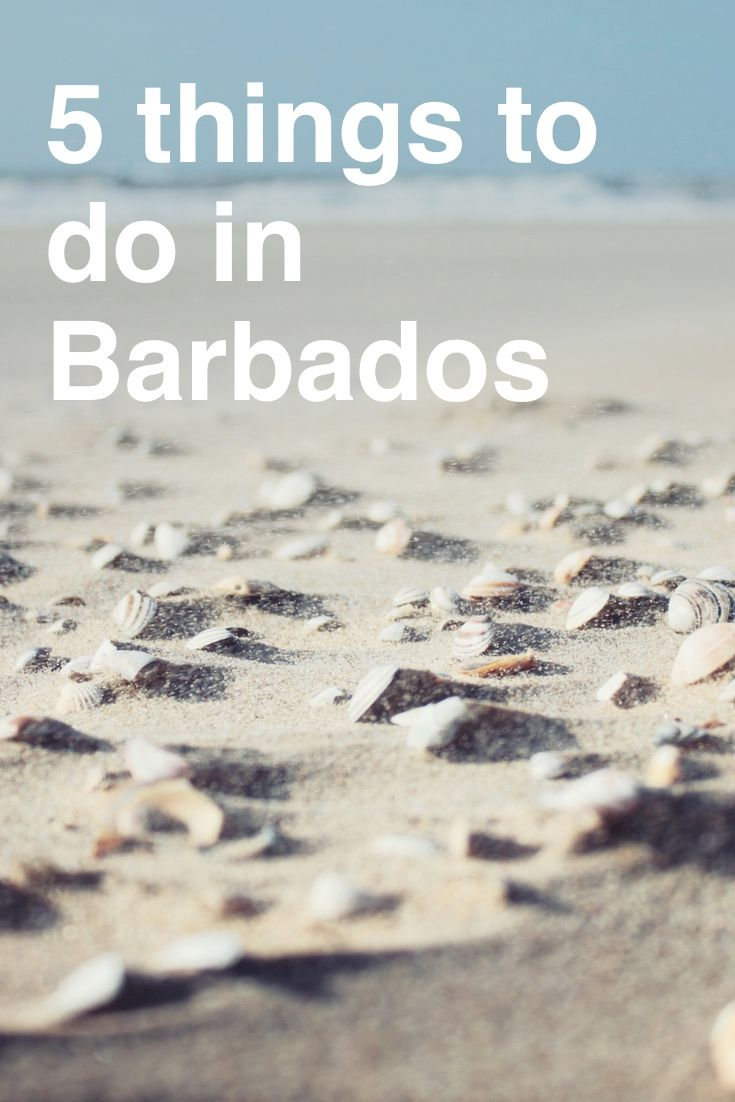 5 Things to Do in Barbados 90