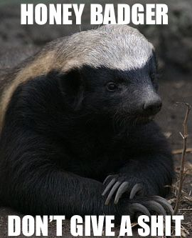 Honey badger just takes what he wants.