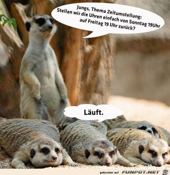 Zeitumstellung Lustig Facebook Humor Erdmannchen Bilder