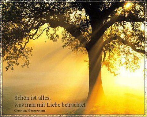 """""""Schön ist eigentliches alles, was man mit Liebe betrachtet."""" ~ Christian Morgenstern"""